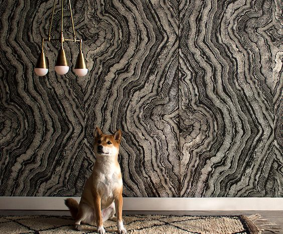 agate wall. amazing.:
