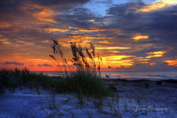 Sea Oats @ sunrise