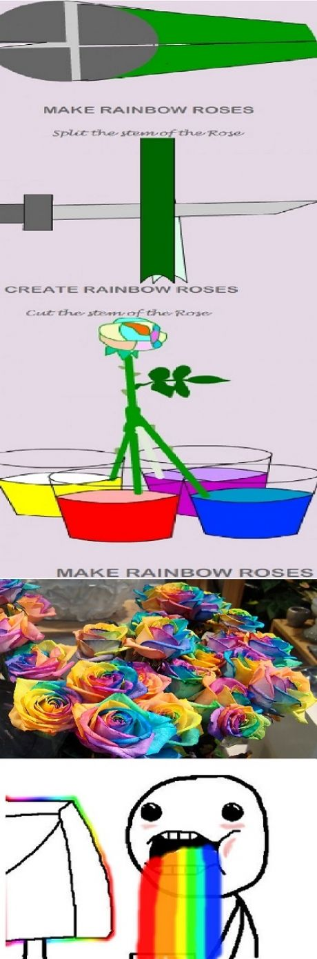 it works rainbow roses and awesome on pinterest