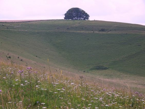The Punchbowl, Wiltshire