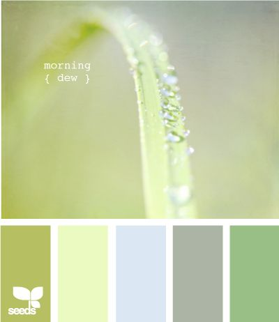 Morning Dew: Baby Room Option #1 - The blue would be slightly more accentuated in place of the grey tone. Considering a dusty blue.