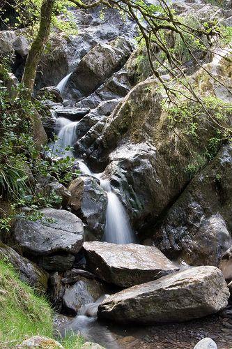 Waterfall Gougane Barra Woods