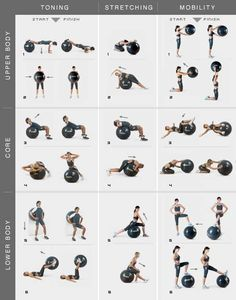 stability ball exercises for total body