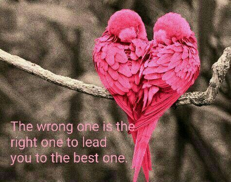 The wrong one is the right one to lead you to the best one.