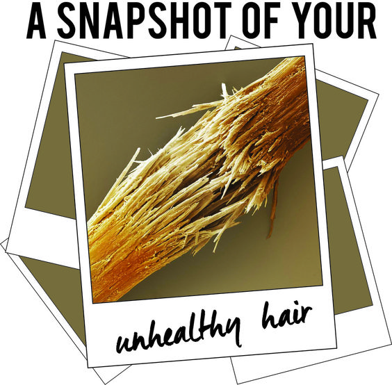 Well here's a selfie that's not so hot! This is an up-close snapshot of your hair when exposed to chemicals in your traditional shampoos. This snapshot exposes the breakage and damage for what it is. Maybe after seeing this picture you can understand why your hair is so frizzy! If every strand of your hair looks like this, how are you supposed to have a fabulous head of hair? We can help with that…