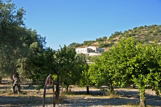 What's your dream holiday home like? Our newest Sicilian villa, Casa Luza, is set in a beautiful countryside setting | The Thinking Traveller
