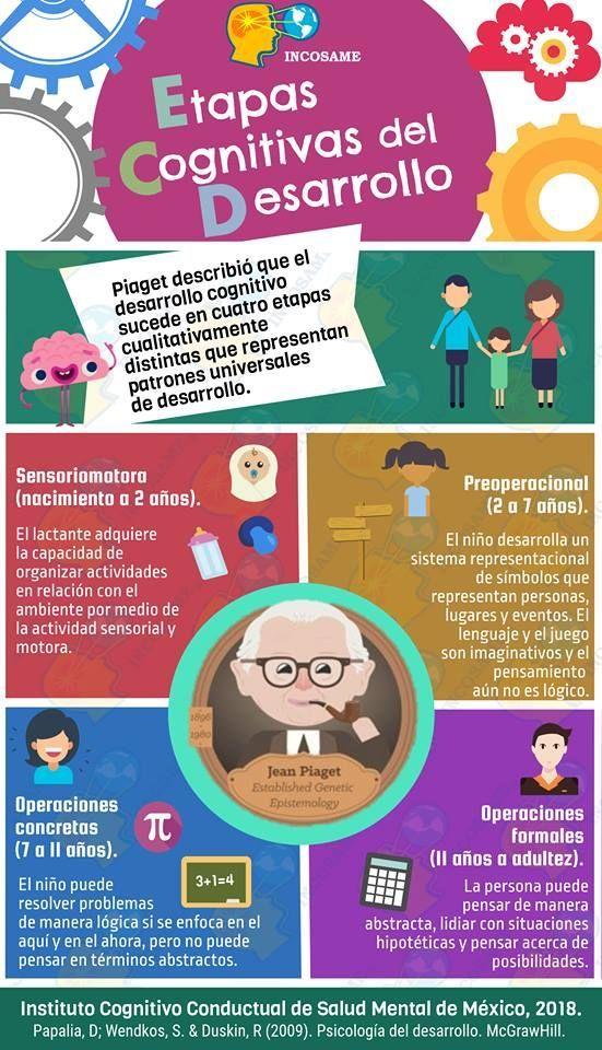 Etapas del Desarrollo Cognitivo según Jean Piaget | Infografía | Blog de Gesvin