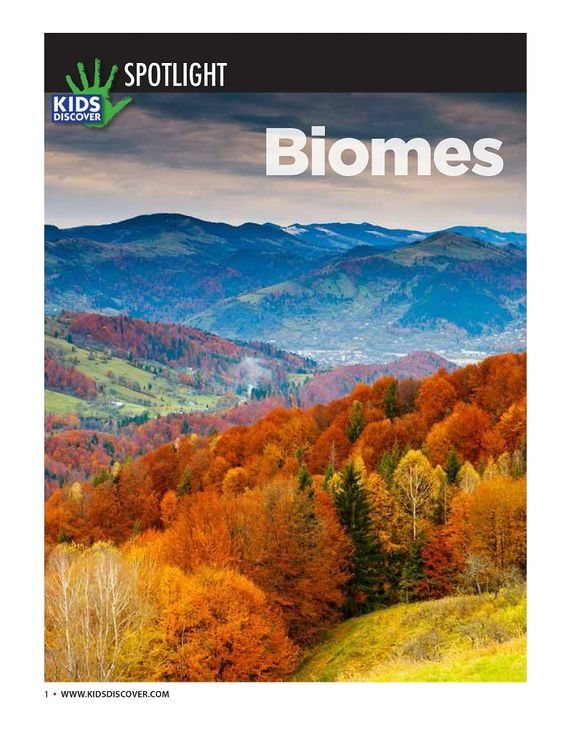 Biomes - Free from KIDS DISCOVER - In this downloadable Spotlight, get 8 packed pages of information about the world's major biomes. An ideal curriculum supplement, this free infopacket includes full-color photos and a 5-question assessment with answer key.