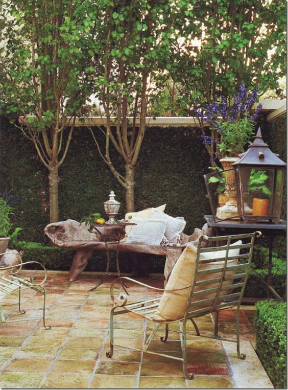 Outdoor Room featuring Fig Ivy up brick wall and Pear Trees