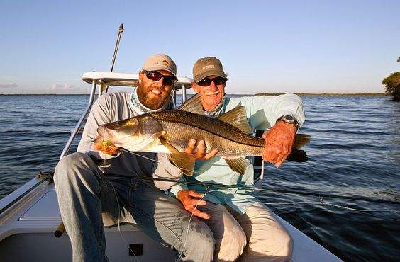 Pinterest the world s catalog of ideas for Everglades city fishing