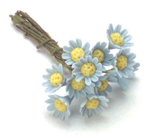 Miniature Daisies on Blue