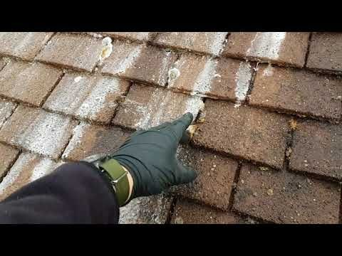 Sodium Hypochlorite Roof Cleaning In 2020 Roof Cleaning Remove Black Mold Concrete Roof Tiles
