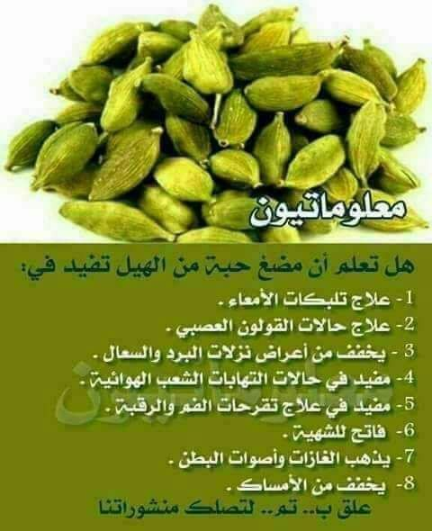 Pin By Sama On ورد وفل Health Facts Food Health Food Health And Fitness Expo