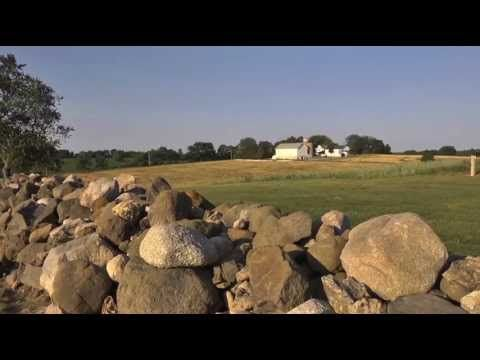 Favorite Place: Pope Farm Conservancy - Sunflower Farm