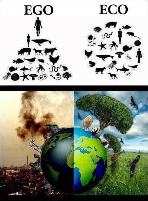 Eco vs. Ego