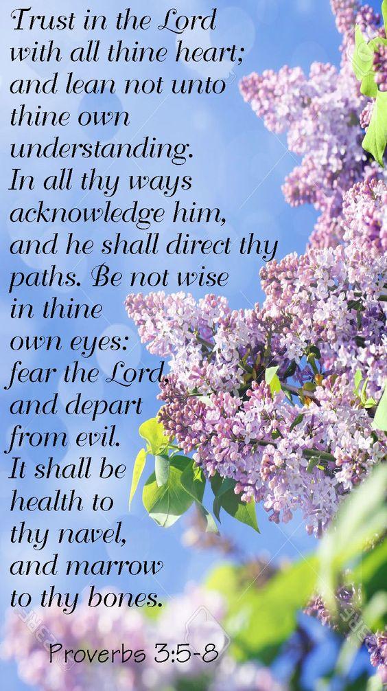 Proverbs 3:5-8 (1611 KJV !!!!):