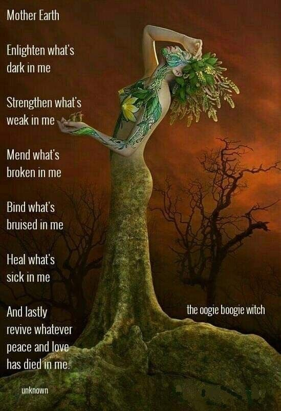 Pin On Hedge Witchery How Do You Learn How To Become A Hedge Witch Witch And Witchcraft A hedge witch is much more than just a witch who tends a garden hedge. pin on hedge witchery how do you