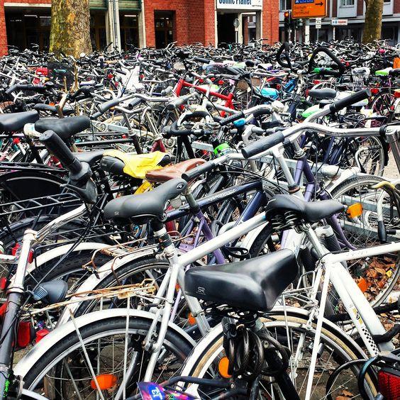 BICICLETA - Con un paisaje muy llano, un clima suave, distancias cortas y una fabulosa infraestructura; el medio de transporte por excelencia en Holanda es la bicicleta.