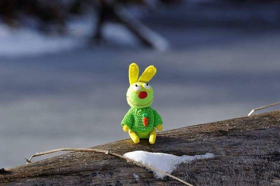 Мои выходные на одной картинке Солнце заснеженный лес и свежий воздух На фото умиротворенный и довольный отдыхом заяс Лимончик от Натуси @nsnork #дубоклёпские_радости #жизнь_зайцев_улыбайцев by duboklepy