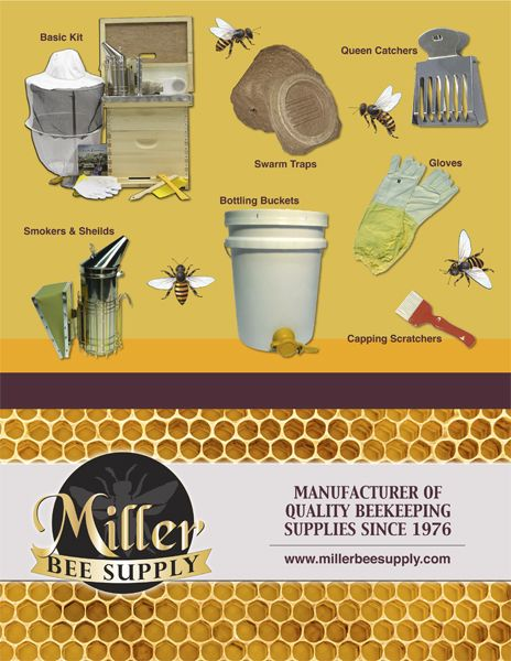 Raise Bees In Your Backyard Everything You Need To Know About Raising Honey Bees From Beehives For Beginners To Bee Supplies Bee Keeping Bee Keeping Supplies