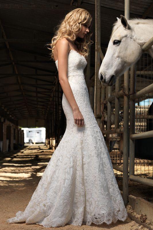 Beautiful dress, beautiful shot! This dress is from Jenny Lee. #horse #countrywedding #westernwedding