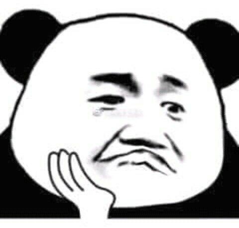 Image result for meme gấu trúc