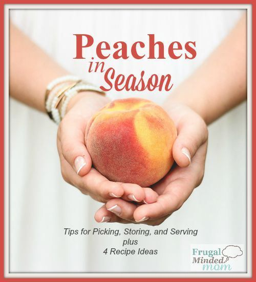 Peaches in Season | Tips for Picking, Storing, Serving & 4 Recipes - Frugal Minded Mom