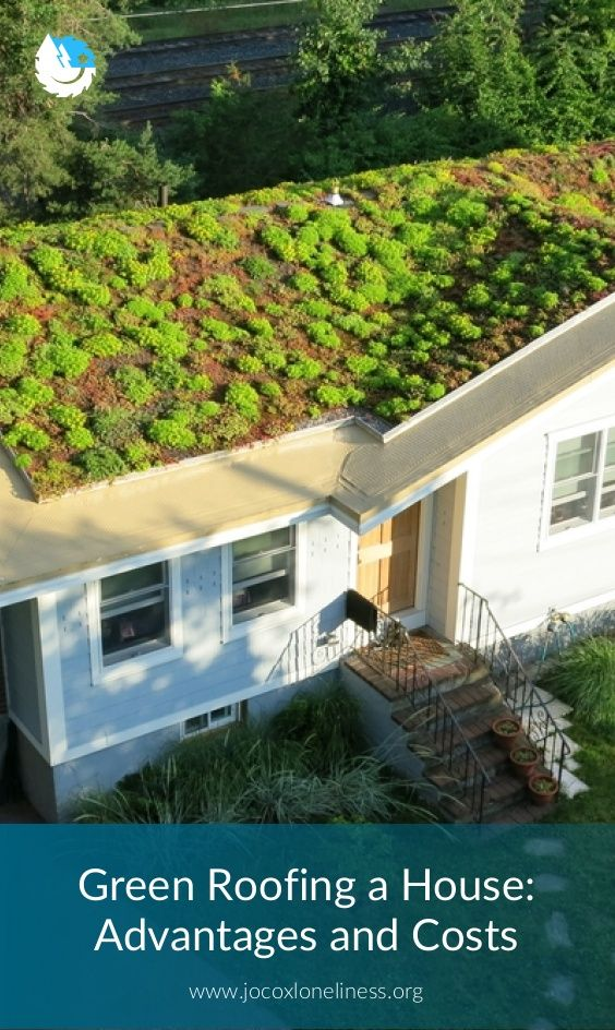 Green Roofing A House Advantages And Costs Green Roof Green Roof Installation Roofing