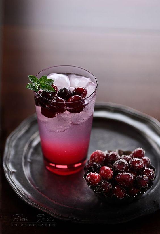 citrus cranberry gin + tonic