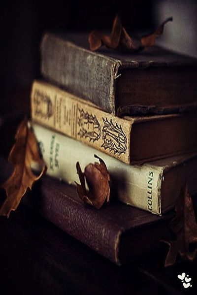 knjige - Page 3 4d13c4d744ac737468a971a7538c72ab