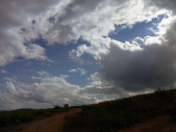Nubes sobre el viñedo