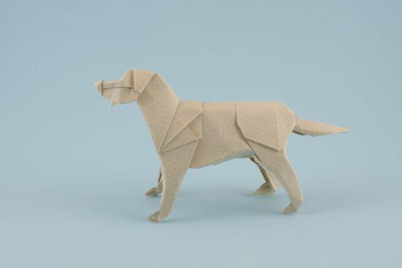 Labrador Retriever | by Quentin Origami