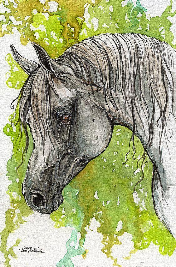Emanda polish Arabian horse watercolor painting - Approximately $109.58 USD
