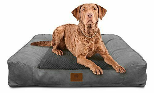 American Kennel Club Akc 1882 Gray Memory Foam Pet Sofa Dog Bed Xl Gray X Large Ebay Pet Sofa Bed Dog Bed Large Extra Large Dog Bed