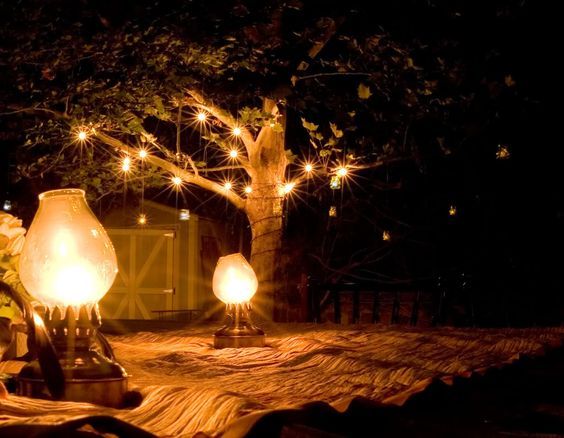 Lanterns & Lights.