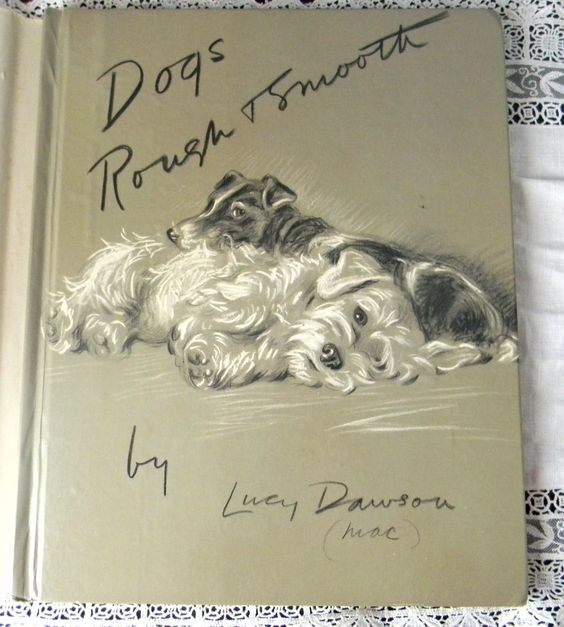 Vintage 1940s Dogs Rough & Smooth Lucy Dawson Book Portraits Drawings DJ