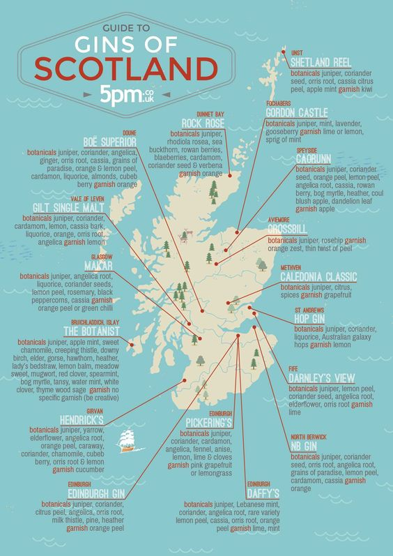 15 Scottish gins we recommend you try - Scotsman Food & Drink
