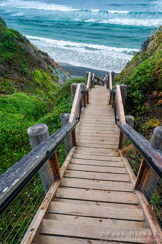 The trail to Sand Dollar Beach, Los Padres National Forest, Big Sur, California