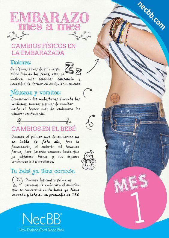cambios en mi cuerpo durante el primer mes de embarazo