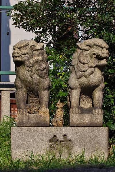 狛犬・狛猫 - 彼の尻尾、彼女の爪痕