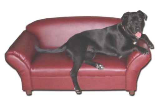 Leather pet couch | Pets | Pinterest | Couch, Dog Beds and Furniture