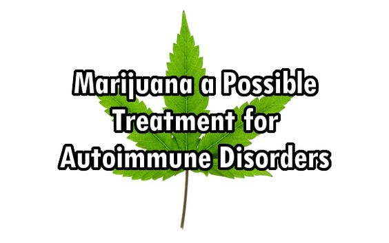 Marijuana a Possible Treatment for AutoImmune Disorders like MS, Arthritis, and Type 1 Diabetes