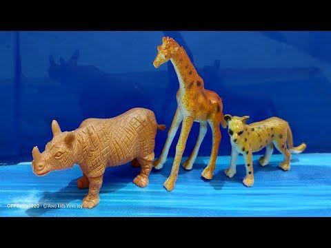 كرتون اطفال اسماء الحيوانات كرتون عالم الحيوانات للاطفال الصغار كرتون عربي اسماء الحيوانات للاطفال Sea Creatures For Kids Kids Ride On Toys Animals For Kids