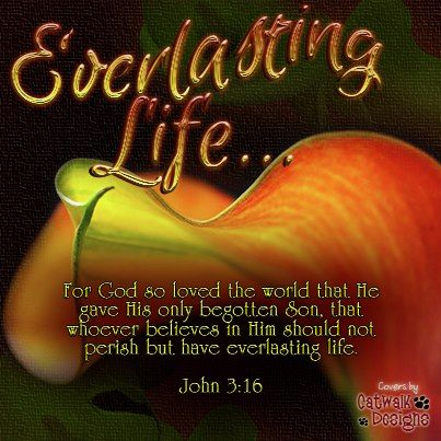 ♥ Remember His LOVE... John 3:16 ♥