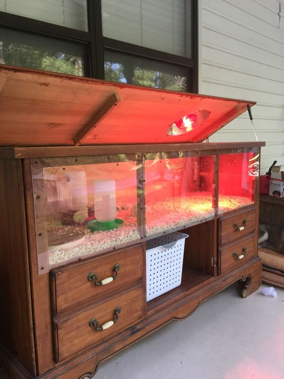 Chicken Brooder made out of an old dresser I had stored in the barn, complete with ventilation, Brooder light, Hinged top with handle, and plexiglass front for easy viewing of your chicks: