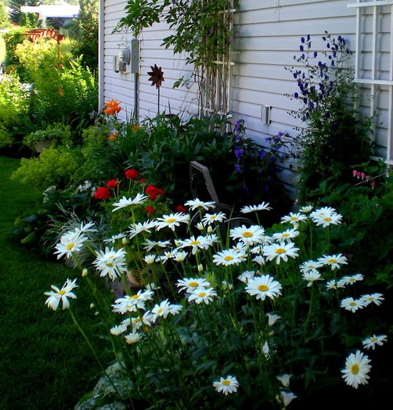 DesignDreams by Anne: Come on the Garden Tour with me!