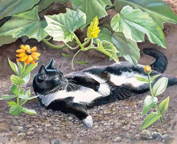 Lang March 2014: Cats In The Country