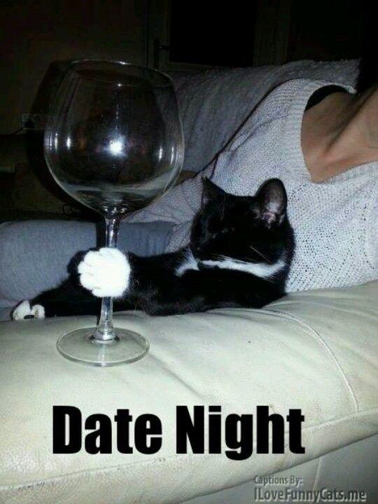 Kittens dating