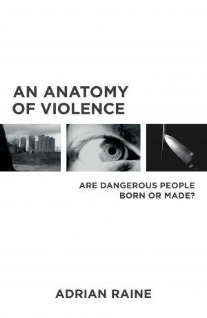 an anatomy of violence