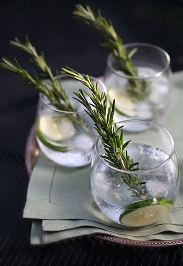 Cucumber-Rosemary Gin and Tonic. I'd probably hate it, or at least poke my eye out, but, damn, it's pretty.